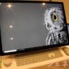 Surface デスクトップ